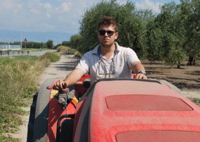 agricola 16